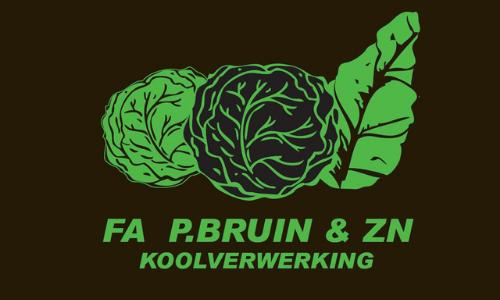 Power Valley - sponsorlogo homepage - Fa. P. Bruin & Zn.